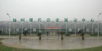 中央发布第五届全国文明村镇候选名单 江苏80个村镇入选 - 新华报业网