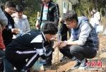 中国矿业大学的大学生们在自己认养的树苗留下自己的名片。 - 江苏新闻网