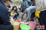 众志愿者排队取水,浇灌自己亲手种下的爱心苗。 - 江苏新闻网