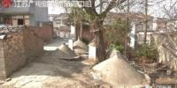 19座坟分布房屋两侧 - 新浪江苏