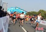 由中国田径协会、昆山市人民政府主办的2018海峡两岸(昆山)马拉松赛15日鸣枪开跑。 黄莹 摄 - 江苏新闻网