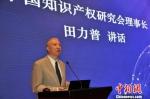 中国知识产权研究会理事长田力普讲话 刘妍妍 摄 - 江苏新闻网