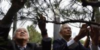 10月8日,日本日中协会植树访华团第33次来到南京,悼念南京大屠杀遇难者。旅日华侨林伯耀参加植树活动。刘俊义 摄 - 江苏新闻网