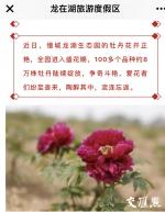 景区公众号宣传内容截图 - 新浪江苏