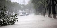 8月10日,浙江温岭,一辆轿车在积水严重的道路上行驶。中新社发 金云国 摄 - 江苏新闻网