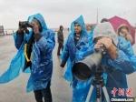 外籍友人欣赏湿地风景。 谷华 摄 - 江苏新闻网