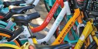 北京,路边停放着不同品牌的共享单车。 资料图片/视觉中国 - 新浪江苏