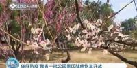 安全有序赏春光!江苏一批公园景区陆续恢复开放 - 新浪江苏