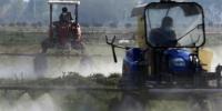 """激增的农业物资流通,显示了农村农业项目的争分夺秒抢""""春时""""。(资料图) 泱波 摄 - 江苏新闻网"""