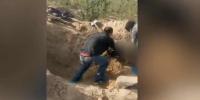 民警将老人从墓穴中抬出。 视频截图 - 新浪江苏