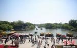 """""""五一""""假期首日,扬州瘦西湖游人如织。 孟德龙 摄 - 江苏新闻网"""