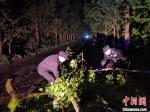 30日晚,如东县经济开发区派出所民警王玉军、辅警张海峰第一时间在辖区公路清理沿途被大风吹断的树木。 警方供图 - 江苏新闻网